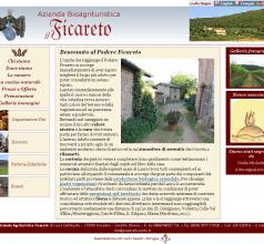 Il sito nella sua prima versione, progettata nel 2006